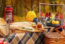 Hazel's Cozy Picnic Party! / backyard in late fall. plaid and gingham, red and gold, apples and pumpkins.