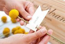 Wedding Styling / by Linea Mae