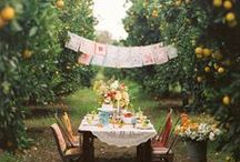 Party Ideas / by Kate Scrivens