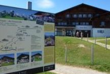 Events and Excursions around Lucerne