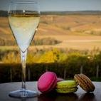 Vins & Champagnes / Sélection des meilleurs vins et champagnes pour un mariage inoubliable. Retrouvez plus d'inspiration mariage sur www.zankyou.fr