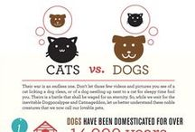 Pet FACTS - Infographics / by MCAS Pets