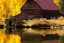 Old Barns / by Diane Phillips