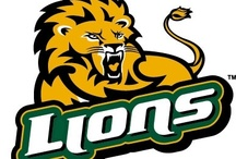 Go Green, Go Gold, Geaux Lions! / We would not being doing Hammond, La if we didn't mention our outstanding college right in the heart of town, Southeastern Louisiana University. Go Lions!