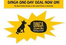 Dinga One Day Deal Products / Dinga Fishing & Stuff announces exclusive One Day Deals on best fishing products. That includes most leading brands like Jarvis Walker, Van Stall, Penn, Fin nor etc. Don't loose your one day deal - visit www.dinga.com.au now!