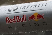 Malaysian GP 2014 / by Infiniti Red Bull Racing