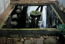 outdoor inspirations / by Agnes