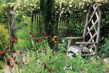 Sweet Home / jardin à l'anglaise / by Eonisra