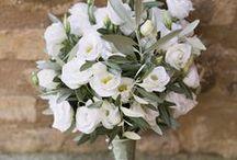 OLIVE weddings / {wedding planning} rustic olive and eucalyptus wedding ideas : idee matrimonio ispirato alle erbe, all'ulivo, all'eucalipto per un mood naturale e campestre