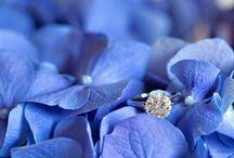 PERIWINKLE & SERENE BLUE weddings