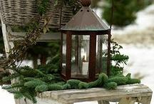 celebrate - winter / by Daniele @ Domestic Serenity