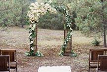 weddings? I love weddings, drinks all around! / by Andi Springett