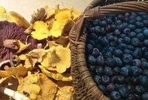 Edible / Food,cooking,ingredients, food as art.