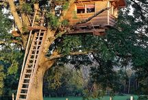 Treehouses / I have a soft spot for houses built onto trees.  / by Hayley