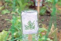 Farm and Garden Ideas / Garden organization, planting ideas, homesteading and more.