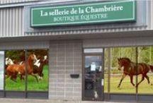 Boutique / Voici notre boutique classique et western située 1005 av. Saint-Jean-Baptiste, local 139, Quebec, Qc,Canada, G2E 5L1 où vous pourrez trouver une grande variété de produits à des prix compétitifs pour vous et votre cheval.
