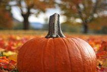 Holiday - Fall - Decorating