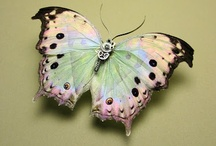 butterflies fly by; / by Sheila Smith