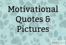 Motivational Quotes & Pictures / Need some motivation to keep you going with your workout or just something to perk you up after a bad day? Check out these awesome motivational pictures and self help advice to keep you feel happier!