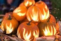 Seasonal Ideas / Christmas, Halloween, Valentines, Easter etc