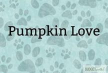 Pumpkin Love / Looking for some delicious pumpkin treats? See a variety of fun fall recipes including pumpkin lattes, pumpkin desserts recipes, and other delicious pumpkin recipes. Great for anyone is a pumpkin fanatic!