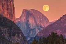 Yosemite National Park / by Patricia H