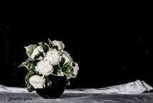 Floral Designer  Emanuela Pilo / ph marilia gallus