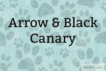 Arrow & Black Canary / Love Arrow & Black Canary? Fan artwork, official artwork, & some scans of comic pages.