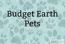Budget Earth Pets / At Budget Earth, we love animals! Here you will find blogs posts relating to our Alaskan Malamutes - Ivi & Rylie - as well as blog posts & reviews about pet health, dog toys, DIY dog projects, dog recipes, and so much more! You may even see some of the other animals that live at our home featured too!