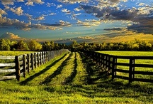 Farm/Ranch Life