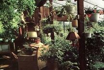 Inverted garden