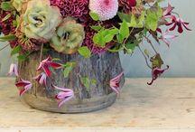 Flowers for inspiration / by Eleni Faller