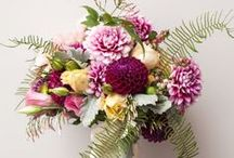 Wedding Florals / by Melissa Winter