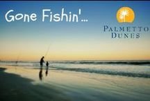 Outdoor Activities on Hilton Head Island / Kayaking, paddle-boarding, biking, canoeing, surfing, swimming, zip-lining and more. Have the perfect vacation at Palmetto Dunes Oceanfront Resort in Hilton Head Island! / by Palmetto Dunes Oceanfront Resort