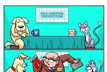 Cartoons / Fresh Dog Comics & Cartoons