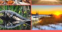 Best of Charleston & S.C. Lowcountry / Discover the best of Charleston and surrounding islands and communities.
