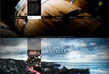 web design + Infographics / by Den Ver