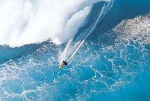 surfmania / by Den Ver