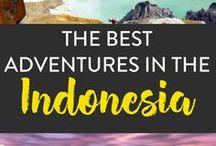 Brunei, Indonesia, Malaysia, Phillipines, Singapore / Brunei, Indonesia, Malaysia, Philippines, Singapore Southeast Asia