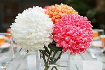 Longest Lasting Flower Choices / This board by Deborah Dolen features flowers that should last at least ten days if not two weeks.  I learn by seeing and doing, so  I hope this helps.  Buy flowers like you would buy milk. Always aim for the freshest that just arrived and skip the droopers.