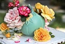 Blooms / Fresh Flowers