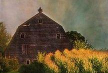 Barns / by Bobbie Hales