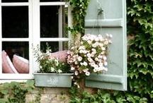 Enchanting Doors & Windows / architecture of doors and windows