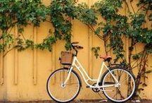 Pretty Cool Bikes / Let's go for a bike ride