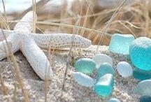 Beach / by Bobbie Hales
