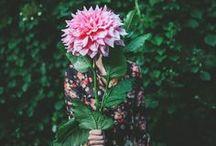 Garden / by Jessi Marie