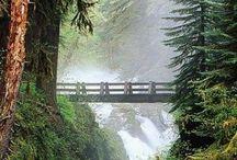 Bridges / by Bobbie Hales