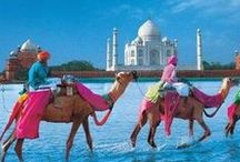 INDIA / The colours & energy of India.