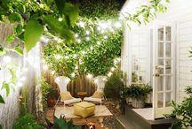 Backyard dreaming / Dream backyards