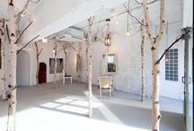 COMMERCIAL SPACES / Interior commercial space design and layout. / by Debbe Daley